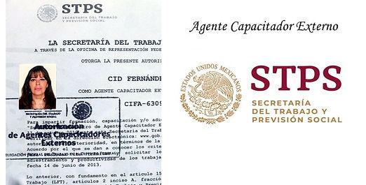Agente Capacitador STPS.jpg