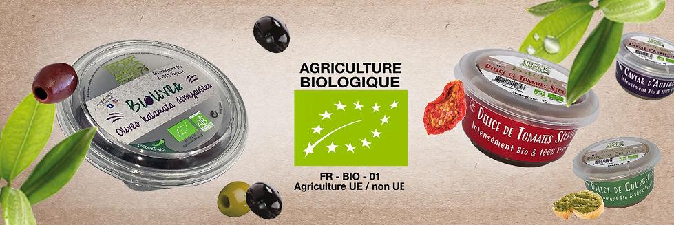 Olives noires et vertes bio