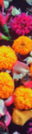 flowers simple.jpg