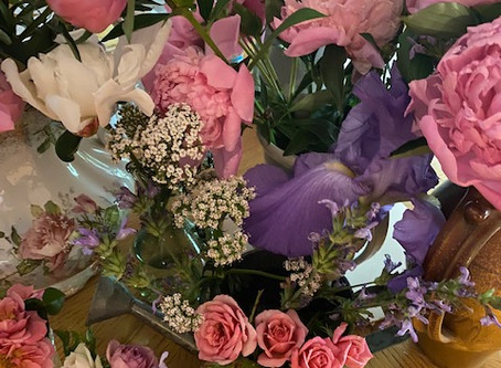 Seek Lavender Spring - Part 8