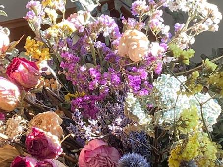 Wintertime Blooms!