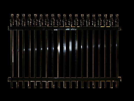 Nuvo™ XVI