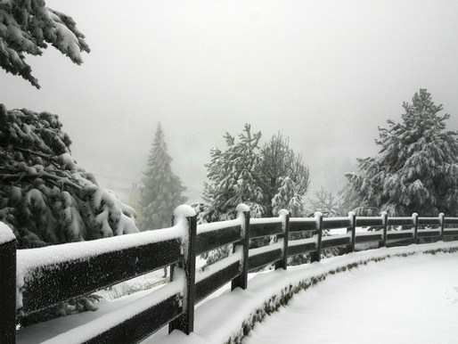 Four Reasons To Set Up A Fence In Winter