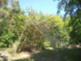 DSCN4964.JPG