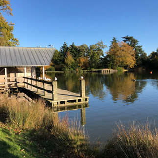 UK: 5 Reasons Why I Love... Dunorlan Park