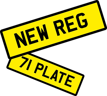 NEW REG plates GRAPHIC.png