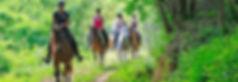 Randonnée à cheval Cevennes