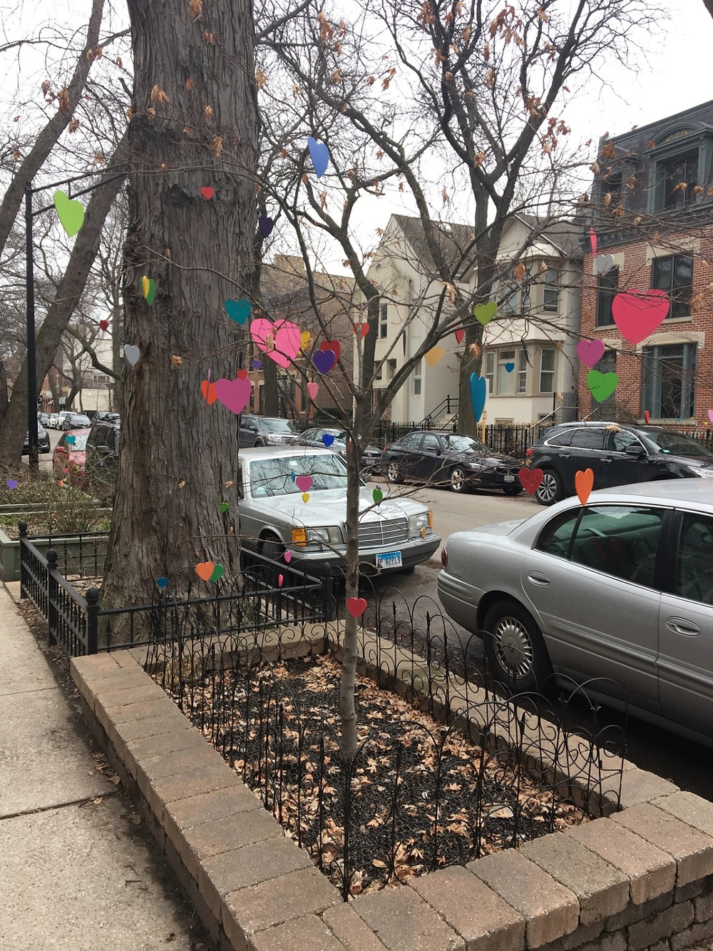 City neighborhood view of tree with colorful hearts. Photo by Julia Dinverno