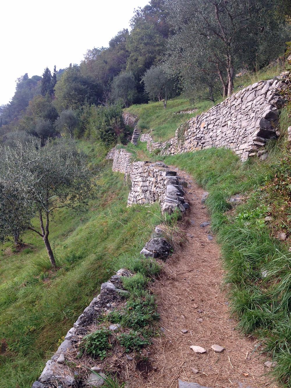 Sentiero del Viandante. Photo by Diana Dinverno