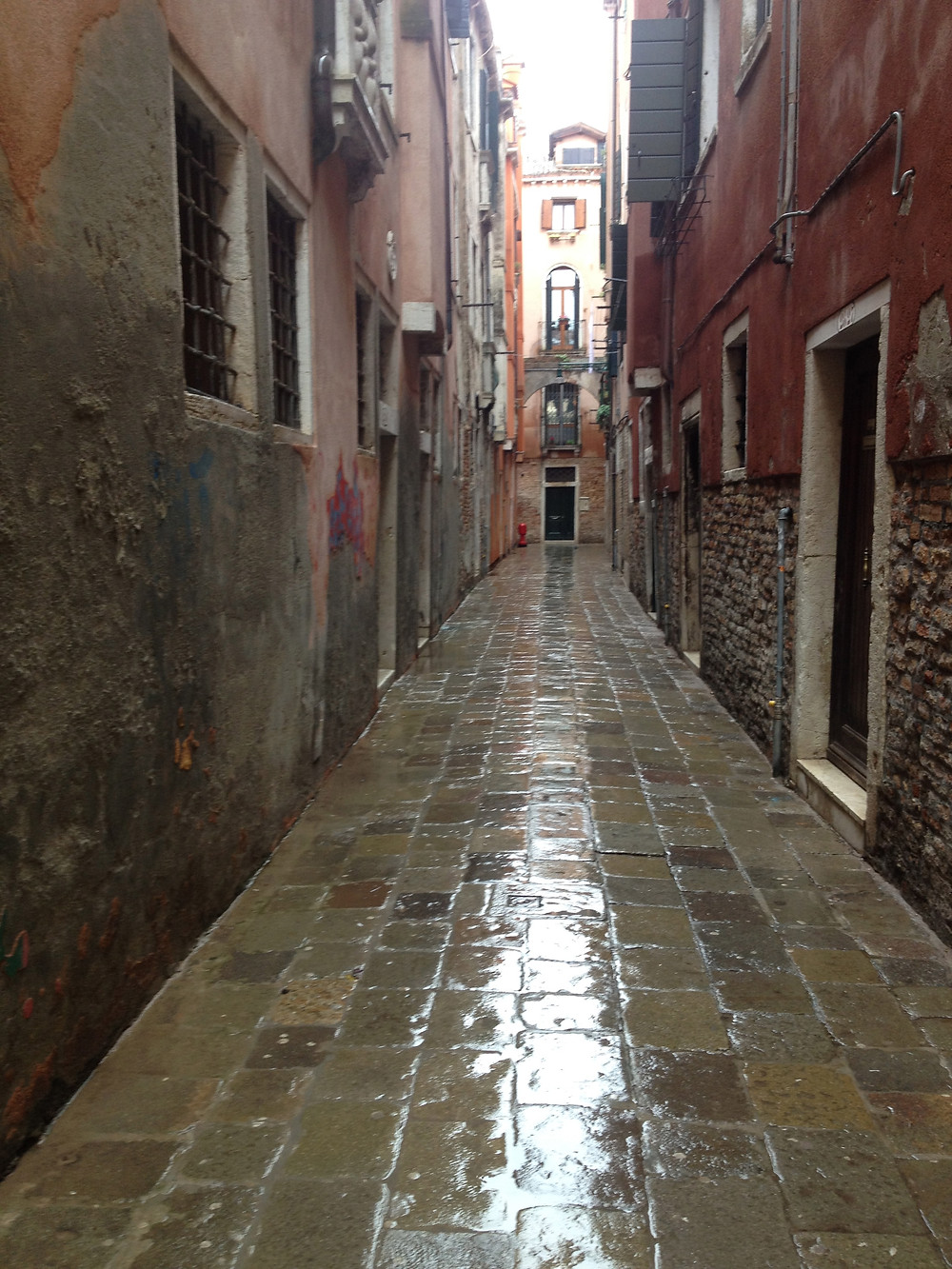 A slick calle in Venice, Italy. Photo by Diana Dinverno