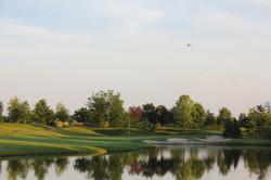 Four Bridges Golf June 2014