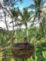 Snapseed 22.jpg