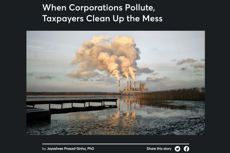 When Corporations Pollute, Taxpayers Clean Up the Mess - Jayashree Prasad