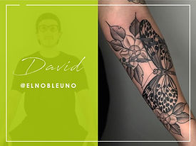 7 David 2.jpg