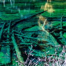 lac vert carrés-3.jpg