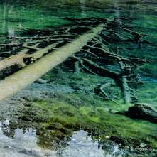 lac vert carrés-5.jpg