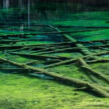 lac vert carrés-4.jpg