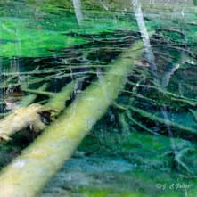 lac vert carrés-10.jpg