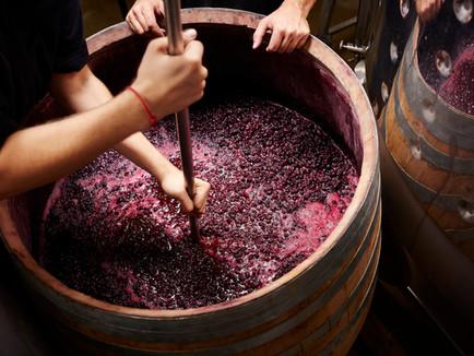 Nossa marca, nosso vinho, feito para você!