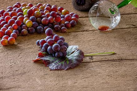 grape-4490047_1920.jpg