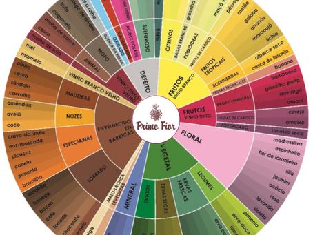 """O """"cheiro"""" do vinho: Roda de Aromas"""