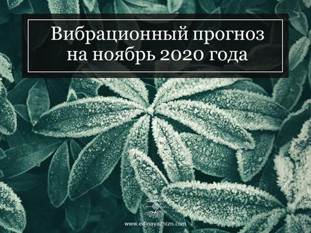 Вибрационный прогноз на ноябрь 2020