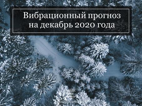 Вибрационный прогноз на декабрь 2020