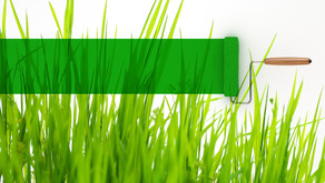Six Tips to Avoid the Greenwashing Smear