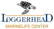loggerhead marine logo.png