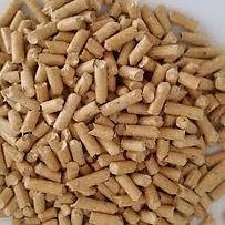 granulado-de-madeira-porquinho-da-india