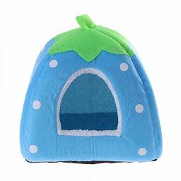 iglu fruta azul.jpg
