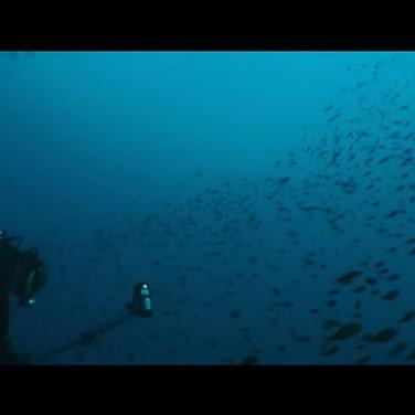 Il Mare dentro - The Sea within