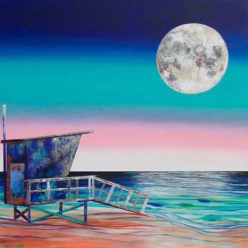 Moonshadow Canvas Print