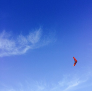 Hanggliders Above