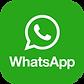 whatsapp cheflera.png
