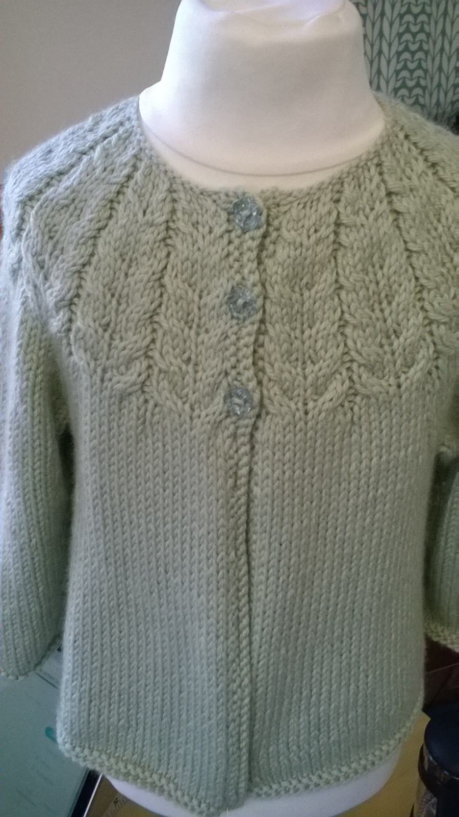 Cable Yoke Cardigan - Debbie Bliss