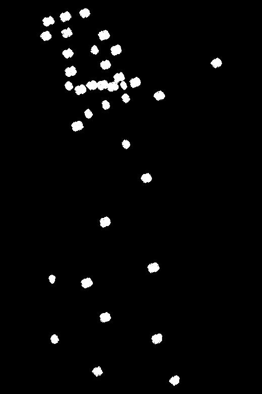 sayılar harita.png