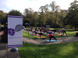 Go Fit Festival