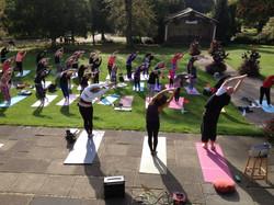 Yoga in Valley Gardens