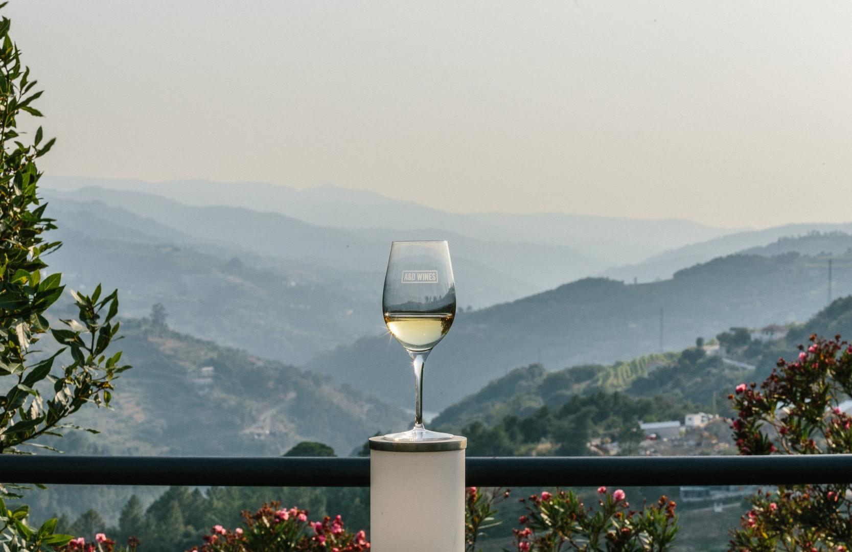 Ett glas med utsikt