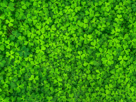 Get Out Your Green   St. Patrick's Mass