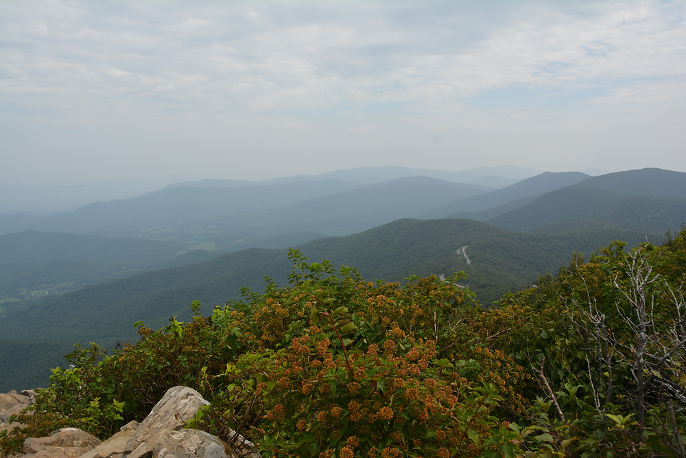 A view of the Blue Ridge Mountains from Stony Man Point