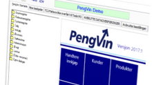 PengVin MV2019:8 klar for levering