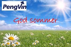 PengVin_Sommer.png