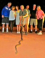 Josh With Guests and an Olive Python