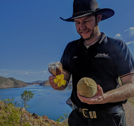 Bush Tucker - A Taste Of The Ord Valley