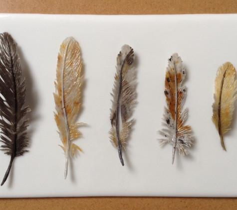Five fine feathers