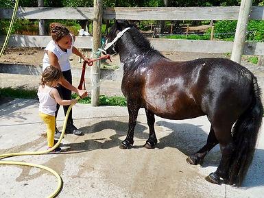 thérapie avec le cheval à Equithérapie 63 photo : Sylvia ROCHE