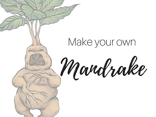 Adults: Create Your Own Mandrake (2PM-5PM)