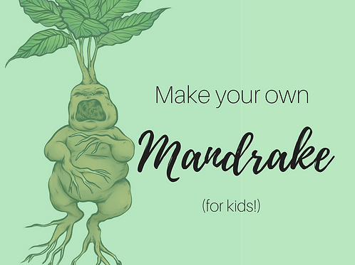 Kids! Create Your Own Mandrake ($40.00 Reservation)